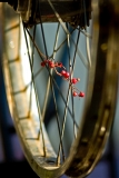 bike-rime-spokes-fabers-san-jose-bikes-web